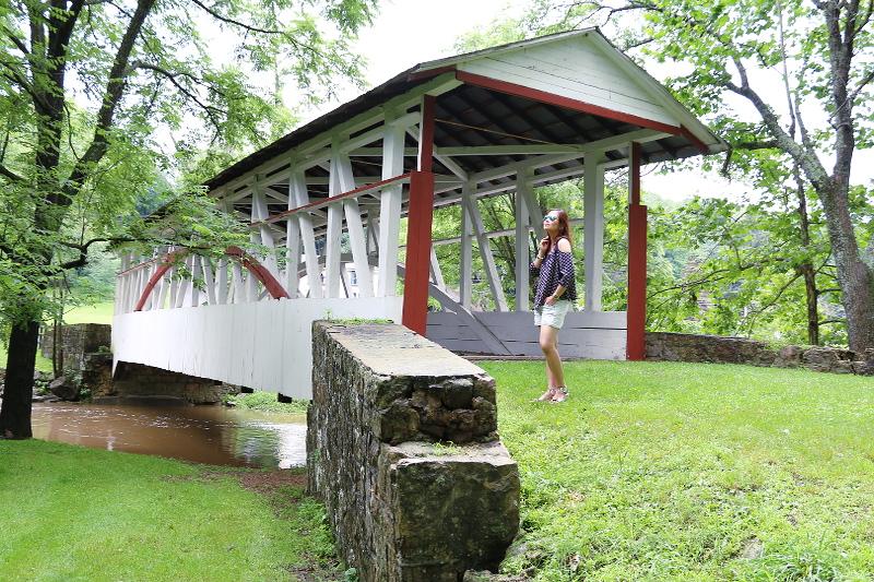 bedford-wood-bridge-11