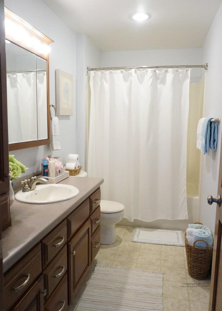 Guest Bathroom Tour