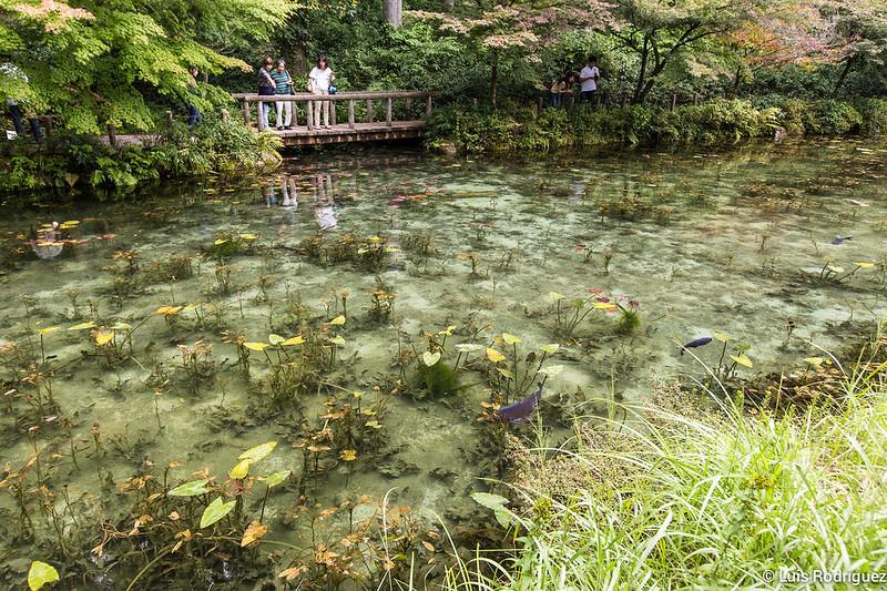 Estanque-Monet-Gifu-13