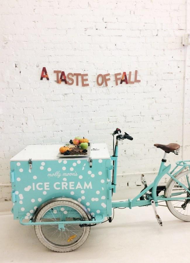 Molly Moon's ice cream: MM Studios