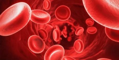 Cara Menurunkan HB Darah Dengan Cepat