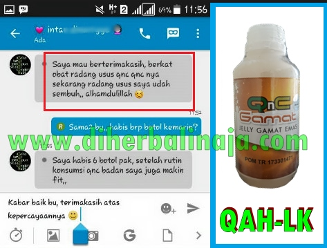 QnC Jelly Gamat Obat Antibiotik Herbal