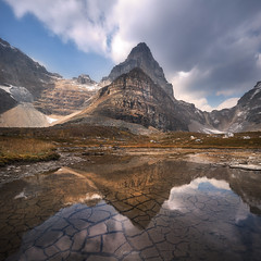 'Day to Day' - Larch Valley, Banff