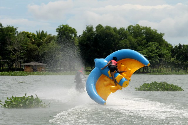 Flying Bird at Aquascape Lake Caliraya