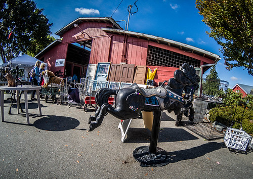 Skagit County Yard Sale-032