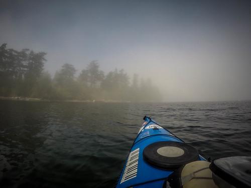 Samish Island Paddling in Fog-8