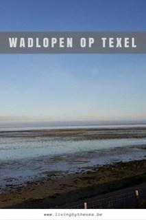 Wadlopen op Texel