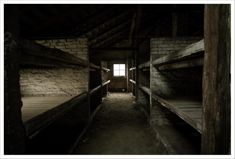 Auschwitz-56