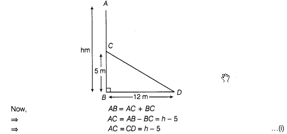 ncert-exemplar-problems-class-7-maths-triangles-11s