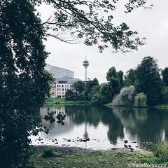 #goodmorning #visitduesseldorf #dusseldorf #düsseldorf #germany #wanderlust #travel #travelphotography #citybreak #visitgermany #guardiancities #guardiantravelsnaps #vsco #vscocam #igtravel #dusseldorf_de #city #landscape