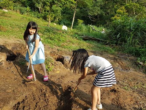 2017-08-05_第43露-苗栗三義諾維琪露營區