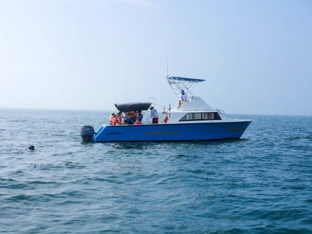 Barco para el tour del tiburón ballena