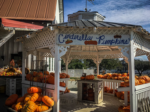 Schuh Farms and Pumpkins-007
