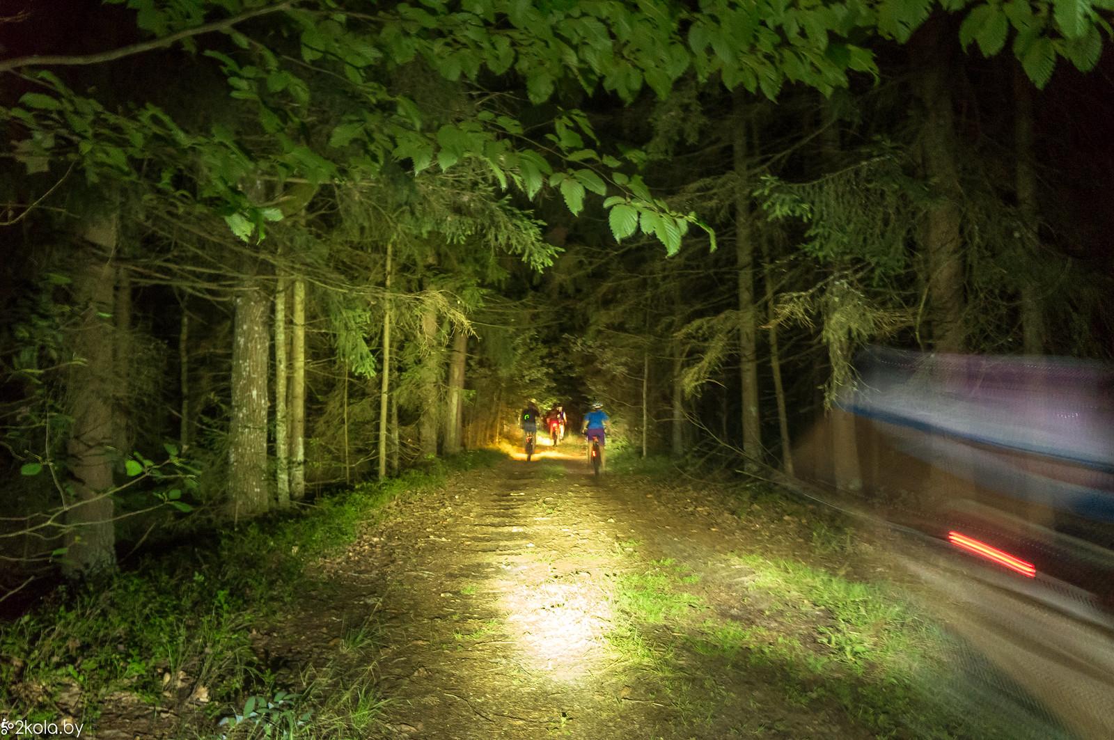 Через лес к Краснослободскому водахранилищу
