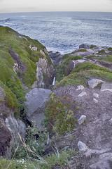 Duncan's Cove Nature Reserve