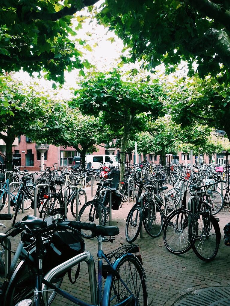 leiden university main library