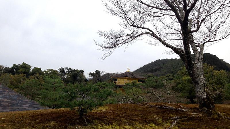 3 Hari Keliling Kyoto - Kinkakuji Temple 4