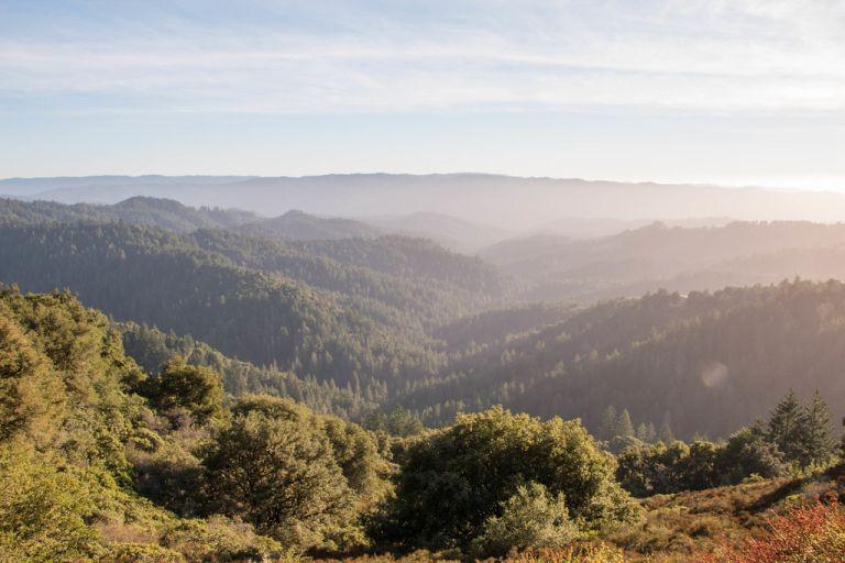 10.01. Skyline Ridge Open Space Preserve