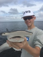 Bonnet head shark Tampa Bay fishing