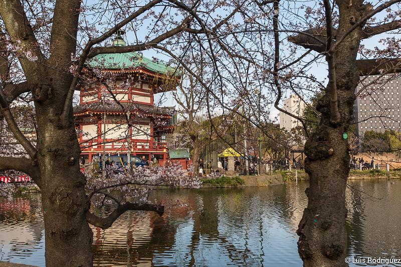 Ueno-Park-62