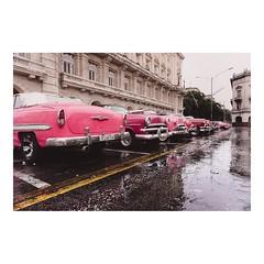Tonos rosa _ Shades of pink ©imarchi • • #habana #havana #lahabana #cuba #cuban #classiccar #car #coche #vintagecar #retrocars #classic #vintagestyle #retrocar #classiccars #carporn #instacar #oldcar #auto #vacaciones #holidays #viaje #viajes #v