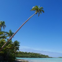 Cook Islands Idyll