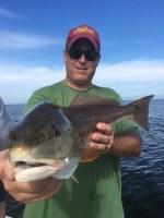 Tampa Bay Fishing Blog www.TampaFishingCharters.com Tampa Fishing Charters®, Inc. 813-245-4738