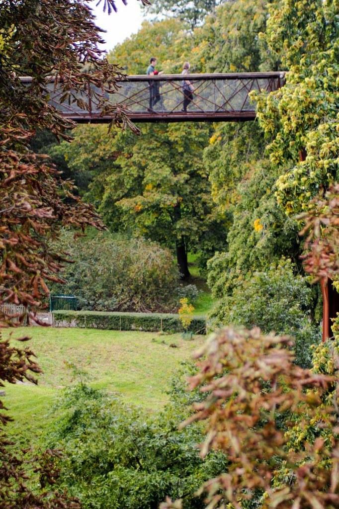 People passing by the treetop walkway, at Kew Gardens, London