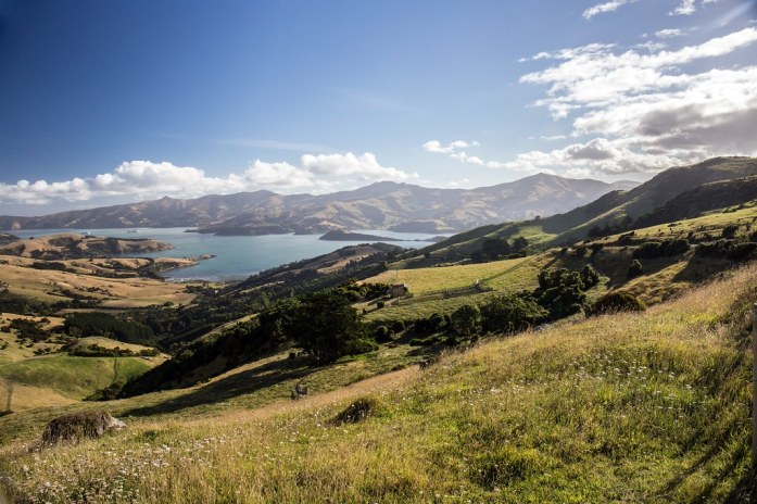 New Zealand - Banks Peninsula