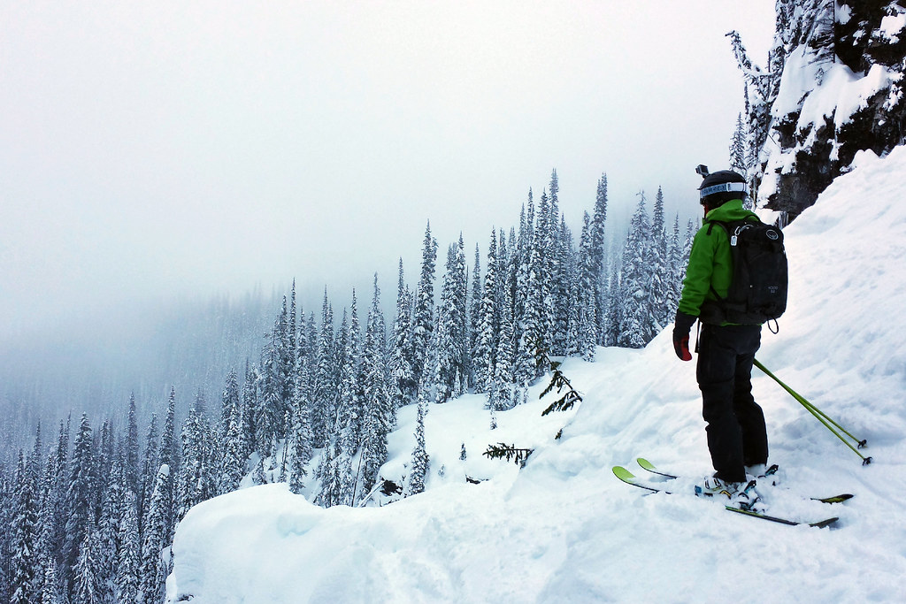 Tree runs in Revelstoke