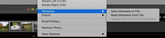 lightroom_lenstagger_save_metadata_to_file