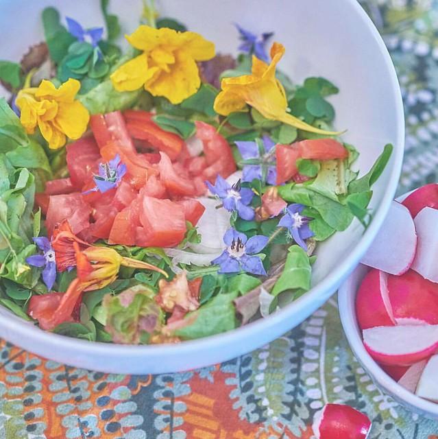 Лимонад из кислицы и летний салат