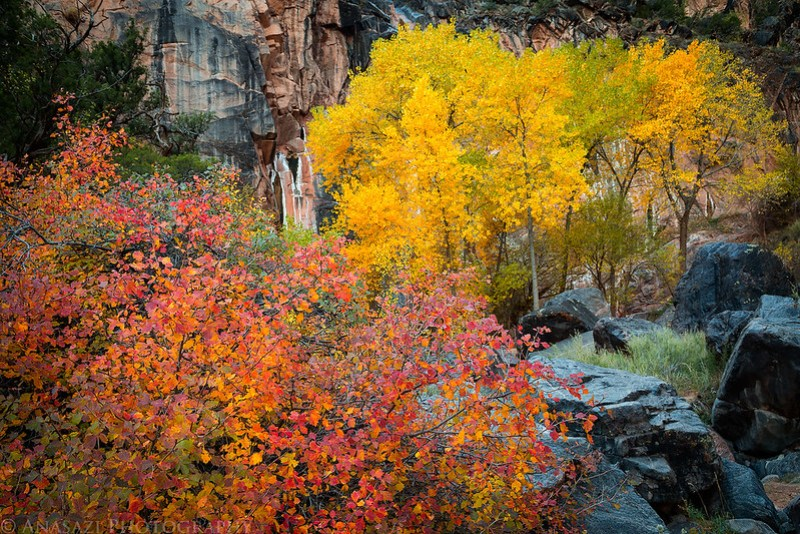 No Thoroughfare Fall Colors