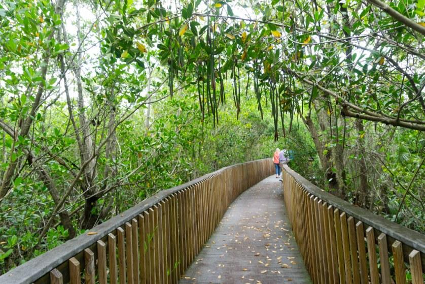 Peace River Botanical & Sculpture Gardens, Punta Gorda, Fla., July 2017
