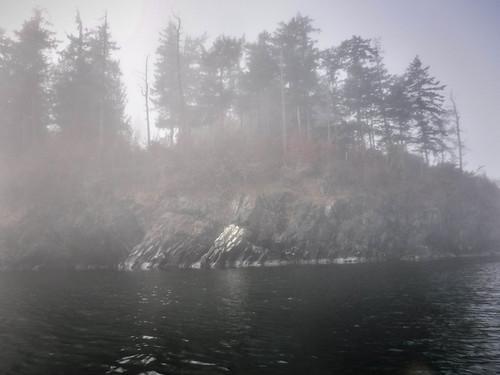 Samish Island Paddling in Fog-31