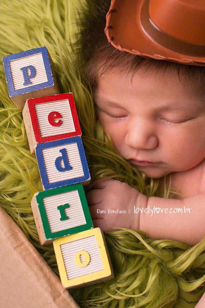 danibonifacio-lovelylove-ensaionewborn-newborn-fotografa-fotografia-acompanhamentobebe-infantil-criança-gestante-gravida-ensaio-book8