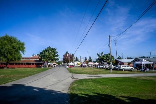 Skagit County Yard Sale