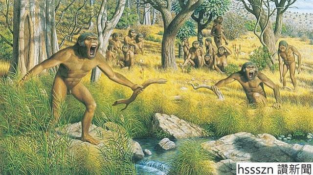 australopithecusWC-56a255a23df78cf77274814e_768_430