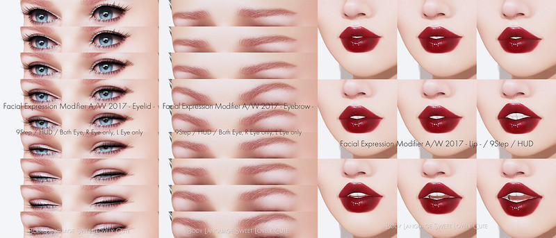 Facial Expression Modifier A/W2017 @ N21