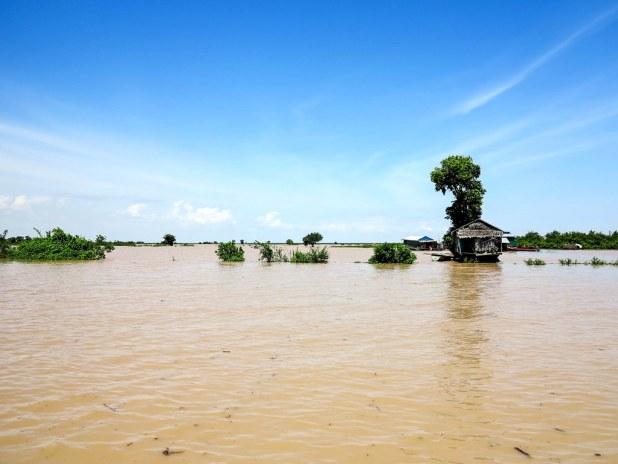 Visita al lago Tonle Sap