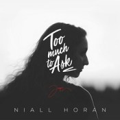 [Cover] Too Much to Ask - Niall Horan.
