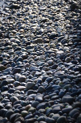 Samish Beach Rocks-002