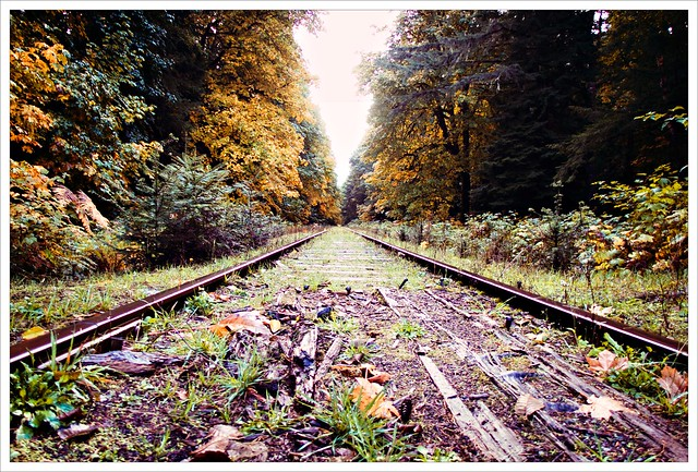 Down the tracks