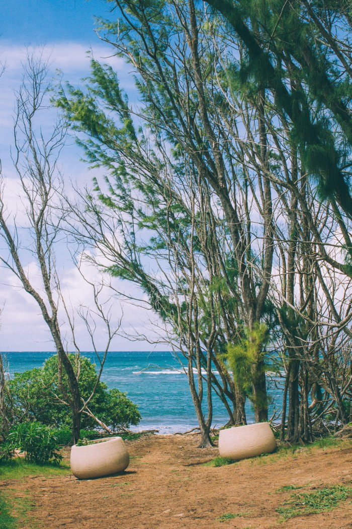 Oahu Beach Guide - A Perogy and Panda Hawaii Travel Guide - Turtle Bay