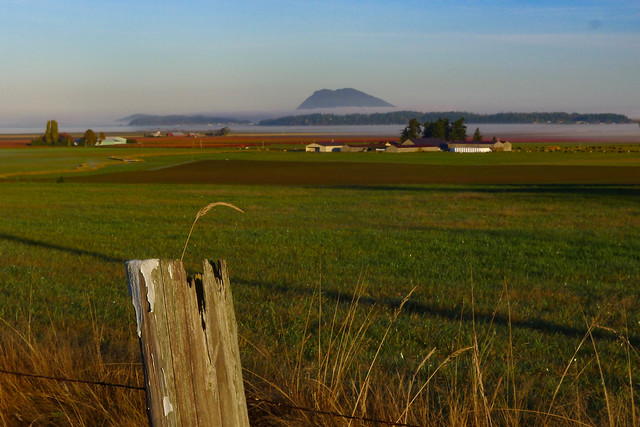 Skagit Valley Foggy Sunrise-004