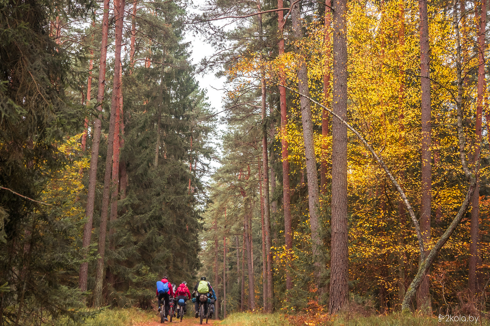 Велопоход Беловежская пуща 2017