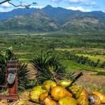Enjoy the Sierra Maestra landscape before hiking 🌳😉#adventuretime #hiking #tropical #cuba #nature #vacation.