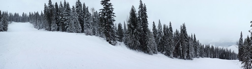 wide-open Revelstoke slopes