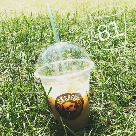 Cold Brew in the Park