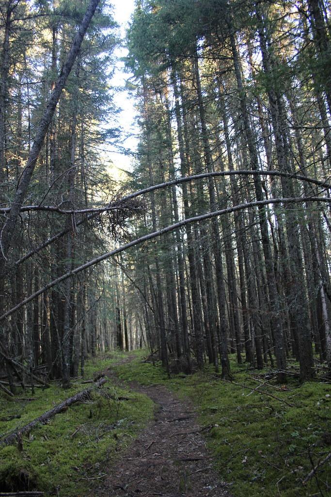Pukaskwa National Park Adventure 05